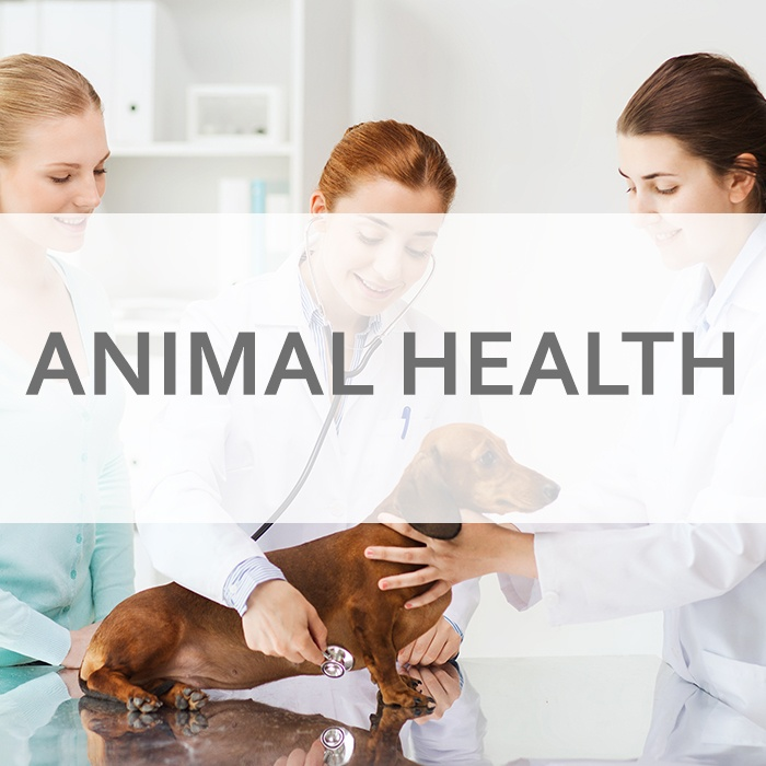 ACA Research - Animal Health